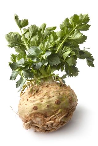 Celeriac root bulb
