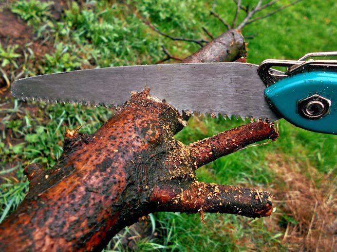 sawing-1318871_1280