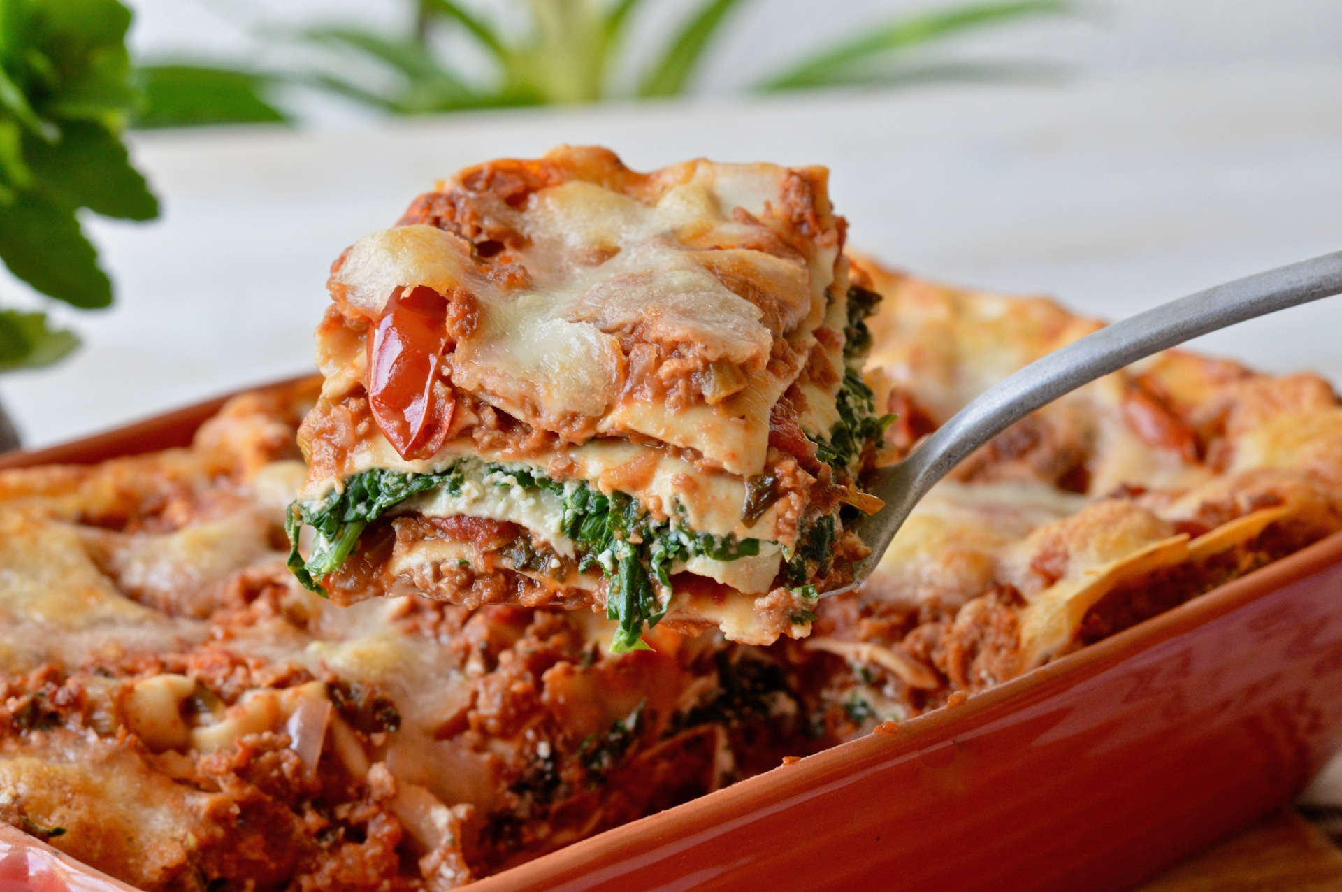 Lasagna vegetarian or vegan